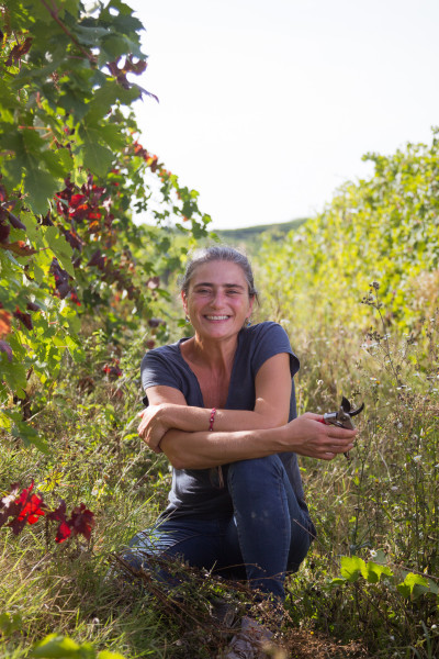 Marina Marcarino, Punset.