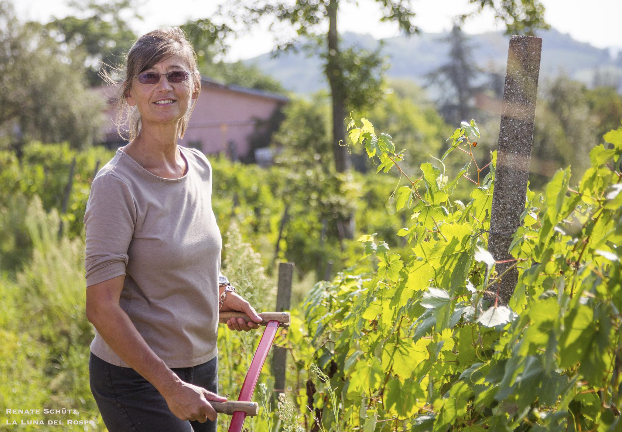 Winzerin Renate Schütz, ist oft mit der Sense in den Weinbergen unterwegs.La Luna del Rospo,