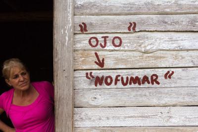 Tabakanbau, Viñales, Kuba