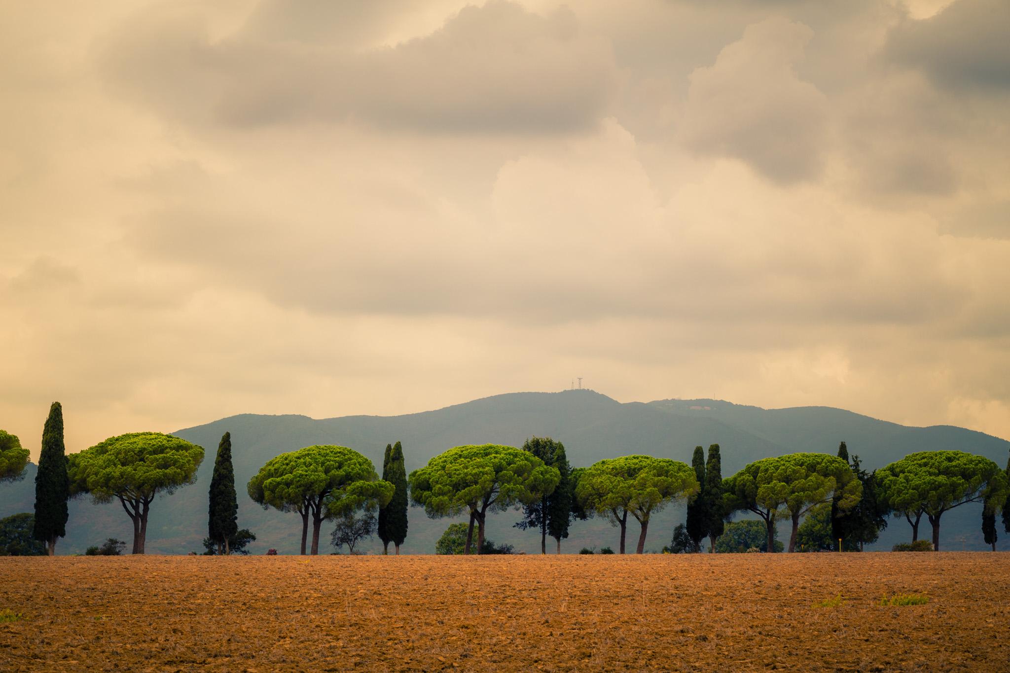 Maremma. Italien.